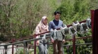 Film Indo Terbaru Layla Majnun