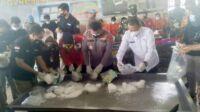 Narkoba Dimusnahkan Polda Jambi